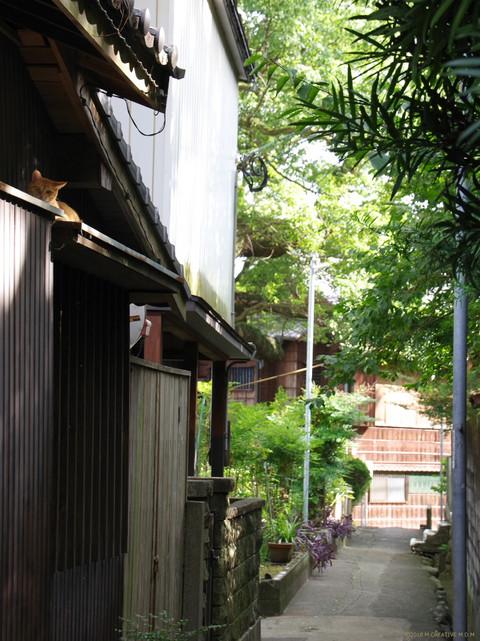 Fukiro_17090201a