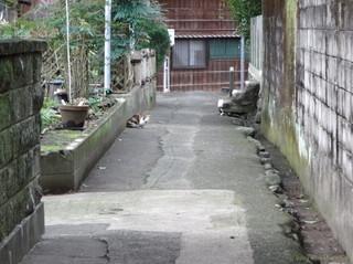 Fukiro_16021704a